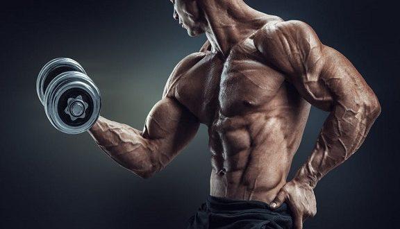 افزایش ترشح طبیعی تستسترون در بدنسازی