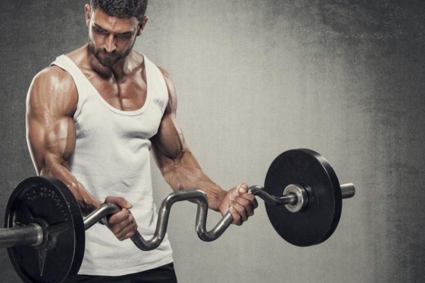 چه هنگامی عضله رشد می کند
