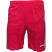 Pargan-AFRA-Pink-Short-For-Men-1